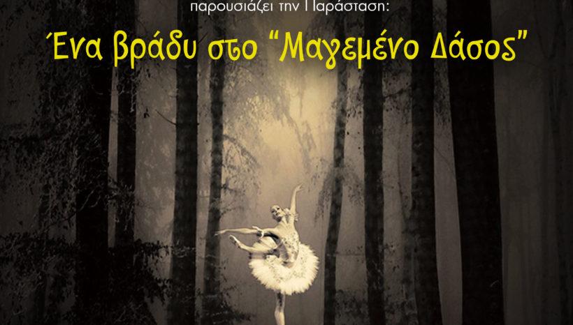 2016 «Ένα βράδυ στο Μαγεμένο Δάσος» Θέατρο Aκροπόλ